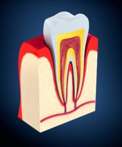 how to improve your gum health Manassas va